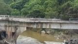 gotetwin-bridge-160.jpg