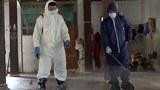 disinfectant-spray-160